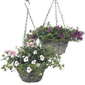 Stekperkgoed in hanging basket